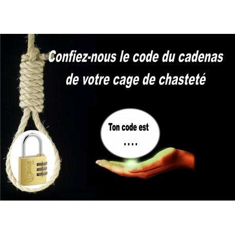Cadenas Keyholder vendu SANS combinaison